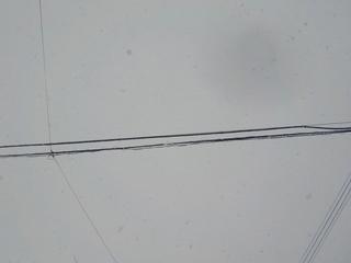 DSCN7073.JPG